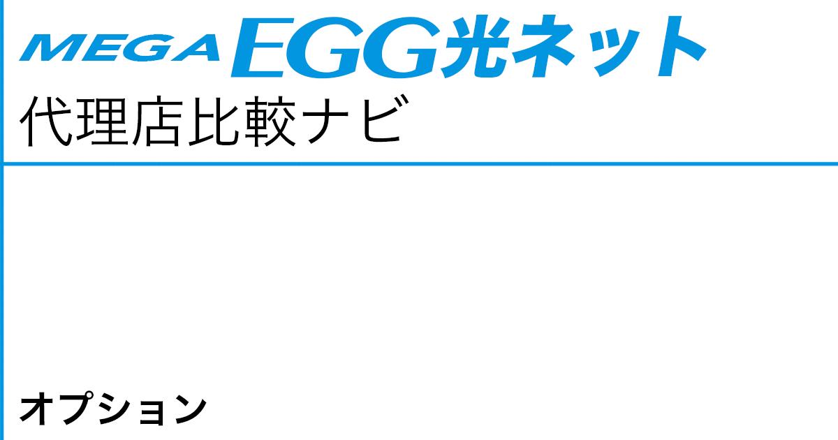 メガ・エッグ 光ネット オプション