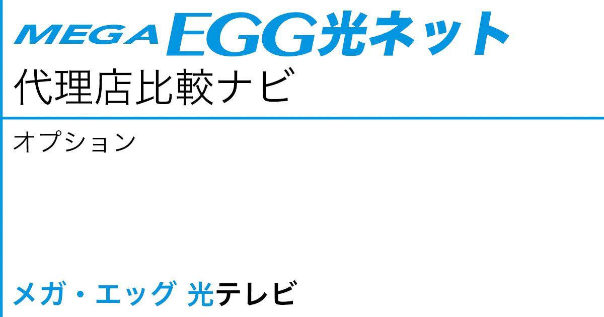 メガ・エッグ 光ネット オプション「メガ・エッグ 光テレビ」