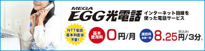 メガ・エッグ 光ネット オプション「メガ・エッグ 光電話」