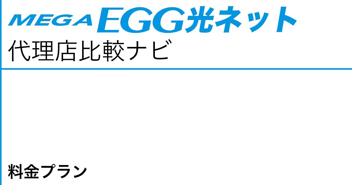 メガ・エッグ 光ネット 料金プラン