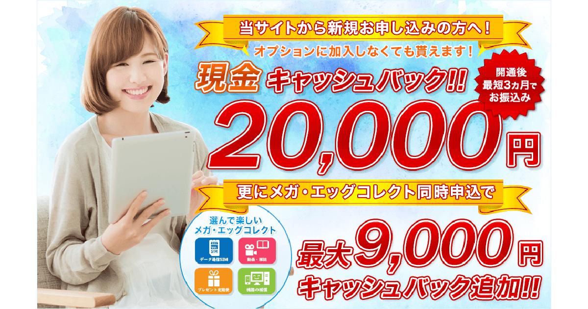 メガ・エッグ 光ネット 代理店「株式会社NEXT」