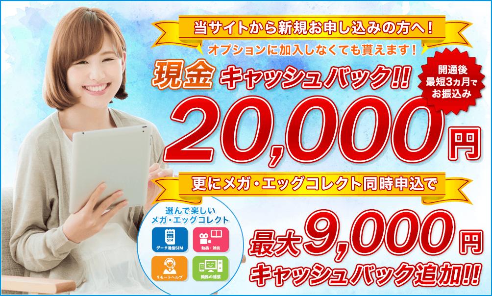 メガ・エッグ 光ネット 代理店「株式会社NEXT」限定キャンペーン